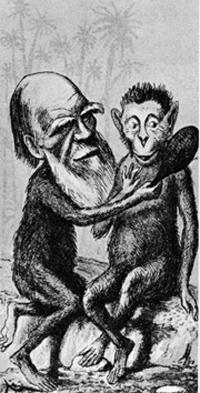 Δαρβίνος - καρικατούρα